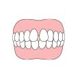 歯と歯の間に隙間がある